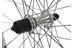 Exal ZX 19 H-Rad 26 x 1.75 mit 7-Fach Nabe silber